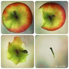 An Apple A Day... (MsFerret_Art) Tags: apple foodporn 365 oneyear apfel iphone myproject project365 365project 365bilder