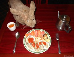 Dr. Takeshi Yamada and Seara (Coney Island sea rabbit) at the East Ocean Chinese Buffet in Brooklyn, NY on January 9, 2016. This is their favorite Chinese restaurant in New York.  20160109Sat DSCN3292=C1 (searabbits23) Tags: nyc ny newyork sexy celebrity art fashion animal brooklyn painting asian coneyisland japanese star tv google king artist dragon god manhattan wildlife famous gothic goth chinese performance pop taxidermy cnn tuxedo bikini portraiture tophat unitednations playboy entertainer takeshi samurai genius donaldtrump mermaid amc johnnydepp mardigras salvadordali unicorn billclinton hillaryclinton billgates aol vangogh curiosities sideshow jeffkoons globalwarming takashimurakami pablopicasso steampunk yamada damienhirst cryptozoology freakshow barackobama seara immortalized takeshiyamada museumofworldwonders roguetaxidermy searabbit ladygaga climategate
