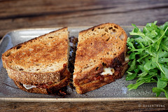 20160126-06-David's cheese toastie at MONA in Hobart (Roger T Wong) Tags: food cheese lunch australia mona sandwich tasmania hobart iv toasted 2016 sigma50mmf28exdgmacro sigma50macro metabones museumofoldandnewart smartadapter rogertwong sonya7ii sonyilce7m2 sonyalpha7ii