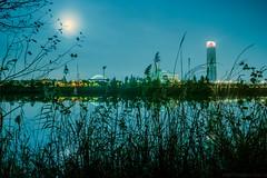 hasta donde la ciudad alcanza (abel.maestro) Tags: rio noche sevilla andaluca torre nocturna maestro abel refleccion pelli gudalquivir
