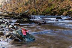 Morningstar (10 of 23).jpg (rangerblue32) Tags: nature water landscape waterfall decew