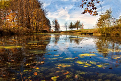 to busy (TimsTolalPhotography) Tags: reflection fall nature pond