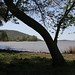 "Lake Guntersville -- Dersham • <a style=""font-size:0.8em;"" href=""http://www.flickr.com/photos/91322999@N07/25014940469/"" target=""_blank"">View on Flickr</a>"