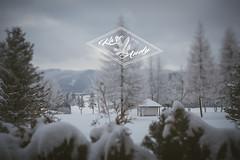 Karo & Andy (Michael Streicher) Tags: winter nikon hochzeit erzgebirge sayda hochzeitsfotografie