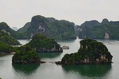 Thousands of islands. #halongbay #vietnam Unique #nature. #unesco ------------------------------------------- #NatGeoTravel #lp #expediapic #rtw #tripnatics #lovetheworld #traveller #igtravelers #travelling #beautifuldestinations #traveldeeper #writetotra (christravelblog) Tags: travelling me nature photography for islands do photos unique feel free visit follow unesco wanderlust traveller vietnam more credit website lp them but contact stories rtw share halongbay thousands travelphotography cooperate lovetheworld travelblogger bucketlist beautifuldestinations travelgram postcardsfromtheworld travelingram igtravel igworldclub instatravel natgeotravel travelstoke igtravelers traveldeeper wwwchristravelblogcom huffpostgram expediapic tripnatics writetotravel