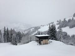 Pleins de champs de neige comme celui-l cette semaine (Jauss) Tags: ski alps alpes sterreich neige alpen tyrol autriche kitzbhel