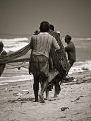 (Bruno Abreu) Tags: blackwhite fishermen srilanka westernprovince pescadores