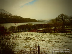 A Winter's Day - Tervine (liamearth) Tags: loch lake awe snow landscape nature trees winter sky clouds mountain earth scotland outdoor water mountains argyll tervine hills highland grass view midwinter