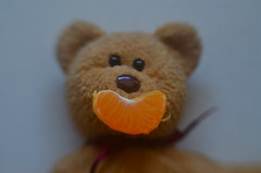 The Cub With The Sunny Smile (MPnormaleye) Tags: bear blur face tangerine fruit lensbaby 35mm weird crazy stuffed furry funny fuzzy bokeh plush slice utata whimsical foodie utata:project=ip232