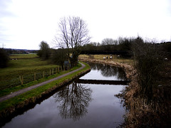 Year 2 March Caldon Canal (Alan FEO2) Tags: uk bridge 2 england horses reflection water grass landscape march bush outdoor path hedge stokeontrent year2 curve caldoncanal 12monthsofthesameimage 2oef