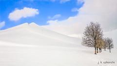 Arboles en la nieve (jkazkarate) Tags: mendiak negua urtaroak euskalherrikomendiak