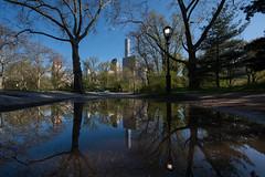 Central Park reflection (Globalviewfinder) Tags: park new york city nyc flowers blue sky usa sun newyork spring centralpark united central states