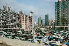 DSC03403 (yanchenwushu) Tags: hongkong center kungfu wushu shaolin gongfu songshan