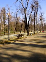 Cluj-Napoca - Central Park (Bogdan Pop 7) Tags: park central romania transylvania parc transilvania kolozsvar cluj clujnapoca roumanie 2016 erdly parcul erdely kolozsvr ardeal romnia klausenburg parculsimionbarnutiu