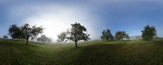 Merenschwand Nebel