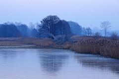 the cold world... (JoannaRB2009) Tags: blue trees winter mist cold ice nature fog landscape pond silhouettes poland polska lodzkie dzkie sarnw