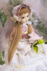 Little Gardener (Muri Muri (Aridea)) Tags: model doll super bjd   vs dollfie volks abjd msd f19 coordinate