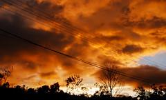 electric cloud (Tom Anirae) Tags: sky orange cloud mountain storm electric wire angle 28mm wide sri lanka nikkor haputale
