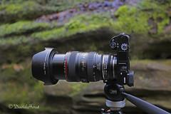 Fotodiox Pro (david.horst.7) Tags: camera canon lens sony equipment nd pro adaptor fotodiox a6000