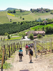 Primavera nelle Langhe (gabriferreri) Tags: nature trekking walking la outdoor hiking collina barolo wellness langhe nordicwalking morra camminare roddi verduno