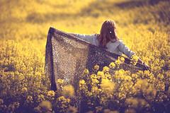 Golden Days II (Gure Elia) Tags: flowers flores primavera espaldas back spring dof blossoms modelo amarillo pamplona pdc pauelo nafarroa colza canoneos5dmarkii comarcadepamplona samyang135f2