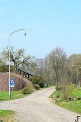 Philips TB200 (f O h O) Tags: netherlands nederland philips 200 mast octogon tb limburg ral openbare verlichting 7009 7033 straatverlichting armatuur octogoon wegverlichting