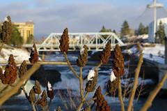 Spokane River Bokeh (will_dewitt) Tags: blue winter sky snow water clouds river spokane december bokeh 2015