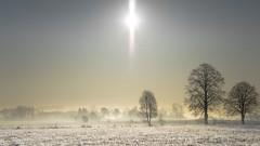 Winter morning silence 2 (piotrekfil) Tags: trees winter sky sun sunlight mist snow nature fog sunrise landscape pentax poland piotrfil