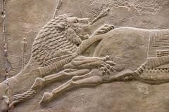 DSCF7002.jpg (Darren and Brad) Tags: england london thebritishmuseum assyria assyrian sportofkings ashurbanipal lionhunting royallionhunts