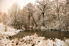 The silence of the snow (OR_U) Tags: longexposure nightphotography trees winter white lake snow ice water night reflections germany frost oru lowersaxony 2016 helmstedt sternbergerteich
