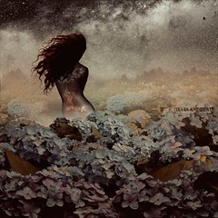 Made from dust and soul (Silvia Andreasi (Images Beyond Mirror)) Tags: flowers woman texture silhouette misty photomanipulation hair nude stars bright surrealism digitalart surreal fantasy imagination stardust whimsical photoillustration milkyway starfield artphotography conceptualphotography mistiness whimsicalphotography imagesbeyondmirror silviaandreasi