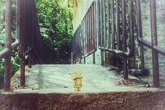 (whatacrappyusername) Tags: abandoned toy danbo danboard