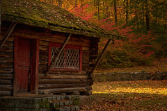 Hansel and Gretel (SunnyDazzled) Tags: door autumn red history fall colors sunshine wooden cabin warm tea room foliage logcabin childrens manor playhouse mossy grounds ringwood