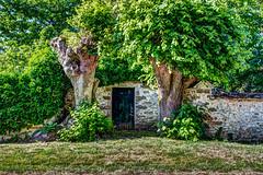 Vernou-la-Celle-sur-Seine. (gilles_t75) Tags: d5300 france gillest hdr nikkor1855mmf3556 nikon bracketing highdynamicrange photohdr photomatix tonemapping vernoulacellesurseine seineetmarne77 îledefrance arbre végétation verdure porte ogué exposurefusion