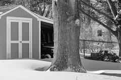 Day After Storm Jonas 06 - Shed Out Back (George - with over 2 mil views - THANKS) Tags: winter light shadow bw usa snow monochrome us blackwhite newjersey unitedstatesofamerica shed snowstorm january mercercounty ewing winterstorm winterscene monochromephotography acdseepro photogeorge nikond750 winterstormjonas