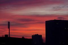 I will color your sky.. (renkata23) Tags: sunset sky cloud color colour building colors silhouette skyline clouds sunrise buildings dawn nikon colorful cloudy outdoor dusk dreamy wish nikonbulgaria