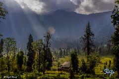 sun rays at aran kel (sajid sharif) Tags: travel trees pakistan mountain clouds landscape sunrays tracking azadjamukashmir arankel sajidsharif