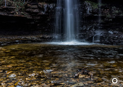 Gibsons Cave (Graham McCarroll) Tags: county wood water waterfall force durham low gibsons cave bowlees