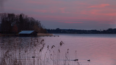 Morning on the Lake (joseph_donnelly) Tags: morning red sky cloud lake germany bayern deutschland bavaria see early ducks wolken redsky boathouse enten morgen tegernsee boothaus badwiessee