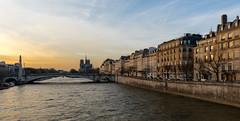 Notre Dame de Paris (Didier Ensarguex) Tags: paris canon cathdrale latoureiffel 75 notredamedeparis 2470l28 pontdelatournelle lesquais heuredore 5dsr didierensarguex