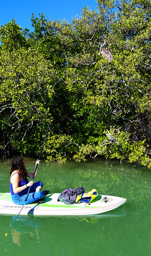 2_10_16 Kayak Paddleboard Tour Sarasota FL 16