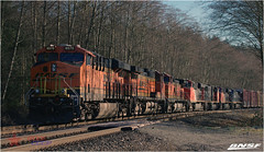 BNSF (BCOL CCCP) Tags: canada bc oliver delta bnsf cccp bcr bcrail bcol