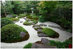 Garden of the Arisugawanomiya residence, Kyoto (Damien Douxchamps) Tags: japan japanesegarden moss kyoto central   recycle residence rockgarden kansai japon steppingstone  kinki    karesansui arisugawanomiya   drylandscapegarden