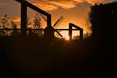 Sunset - Slottsparken