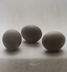 Huevos (eggs still life) (CarlosConde/Photography) Tags: bw stilllife naturaleza film sepia sony voigtlander 14 huevos negative bodegn eggs 58mm nokton muerta blanconegro virado pelcula ilce7m2