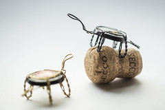 20160411_F0001: On top of the world (wfxue) Tags: wood stilllife animal wooden wire model turtle object cork champagne tortoise cap bottlecap sparklingwine