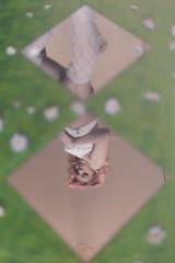 a beautiful dream (DeboraDiDonato) Tags: flowers light portrait reflection nature mirror model mood fake surreal lingerie minimal concept minimalism conceptual styling updown concettuale modella