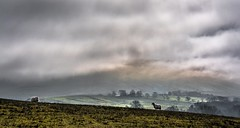 Scotch mist. (AlbOst) Tags: mist clouds scotland countryside scotchmist mistclearing