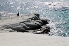 Agrigento - La Lidia e il mare (valerologan) Tags: mare sicily sicilia agrigento realmonte