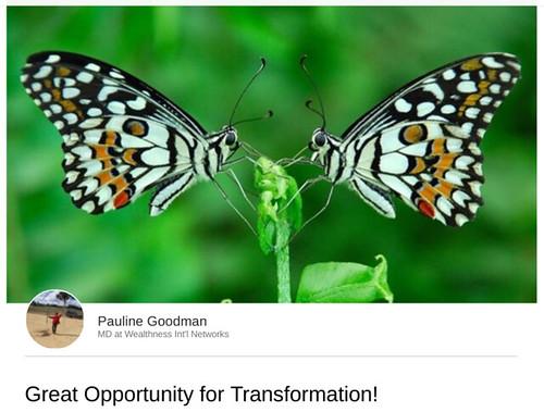 WIN_Transformation